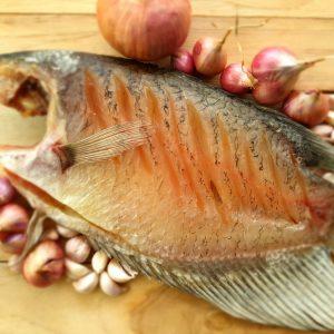 ปลาแรดแดดเดียว อบเครื่องอบลมร้อน